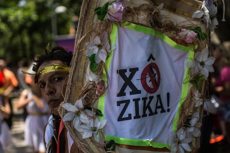 "The carnival ""Bloco"" on the streets of Rio in January was aimed at raising awareness of the need to prevent the spread of the Zika virus (AFP Photo/Christophe Simon)"