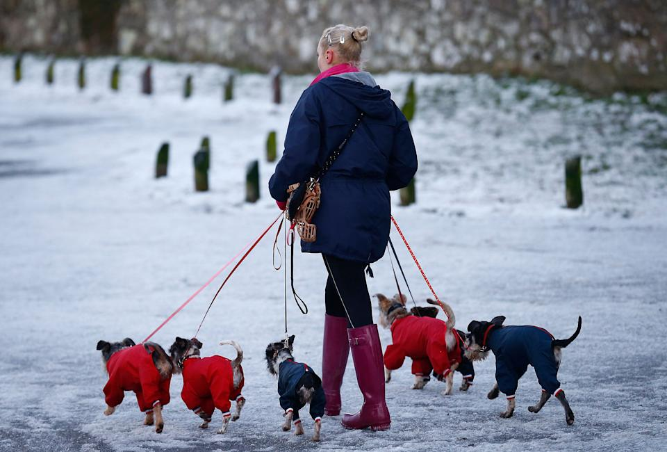 A woman walks dogs wearing jackets during icy conditions in Newtown Linford (Photo: REUTERS)