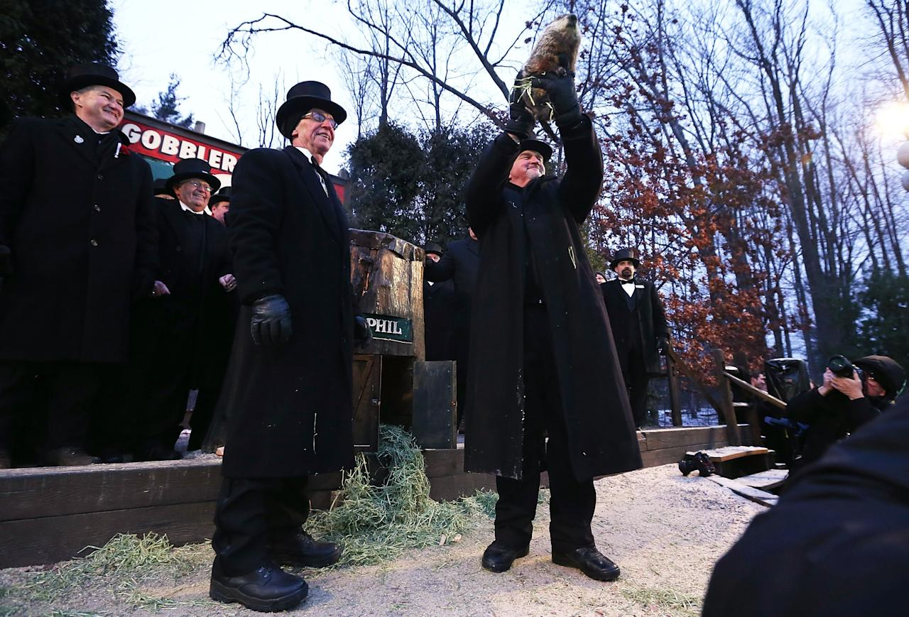 PUNXSUTAWNEY, PA - FEBRUARY 02:  Groundhog co-handler John Griffiths (R) holds up Punxsutawney Phil as co-handler Ron Ploucha (3rd L) looks on after Phil didn't see his shadow and predicting an early spring during the 127th Groundhog Day Celebration at Gobbler's Knob on February 2, 2013 in Punxsutawney, Pennsylvania. The Punxsutawney 'Inner Circle' claimed that there were about 35,000 people gathered at the event to watch Phil's annual forecast.  (Photo by Alex Wong/Getty Images)