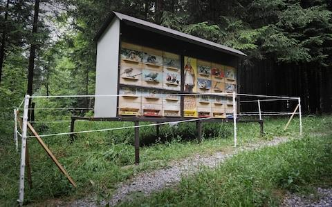A beehive near Bloke in Slovenia which is protected with an electric fence to prevent bear raids - Credit: Uros Abram