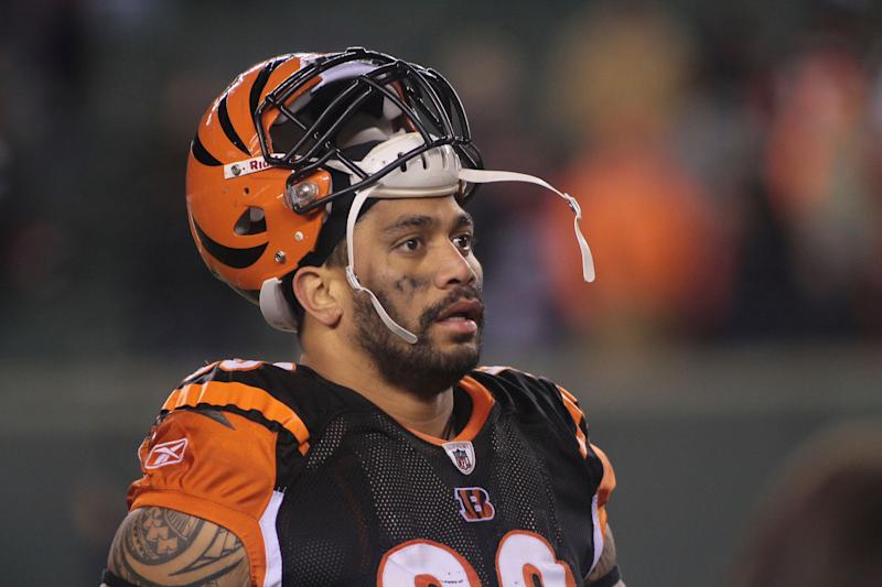 Former Cincinnati Bengals DE Jonathan Fanene is facing eight felony counts after an alleged attack on his wife and sister. (AP)