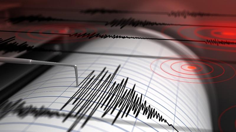 Earthquake Measuring 4.4 on Richter Scale Hits Gujarat