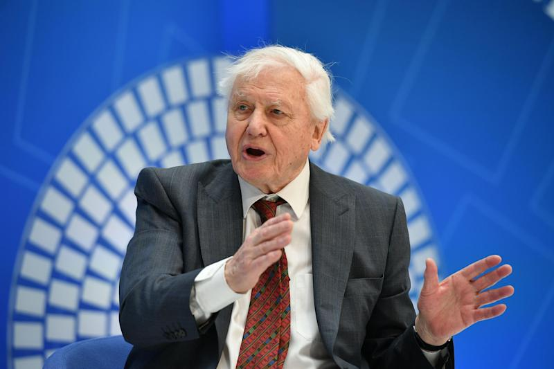 David Attenborough takes part in a discussion on nature and the economy during the IMF - World Bank Meetings at International Monetary Fund Headquarters in Washington DC: Getty