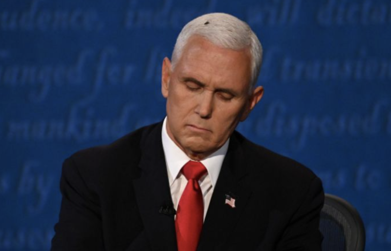The fly is seen on Mike Pence's head during the US VP debate. Source: Twitter