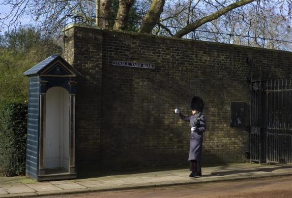 A member of the Queen's Guard marches outside Clarence House in London March 8, 2012.
