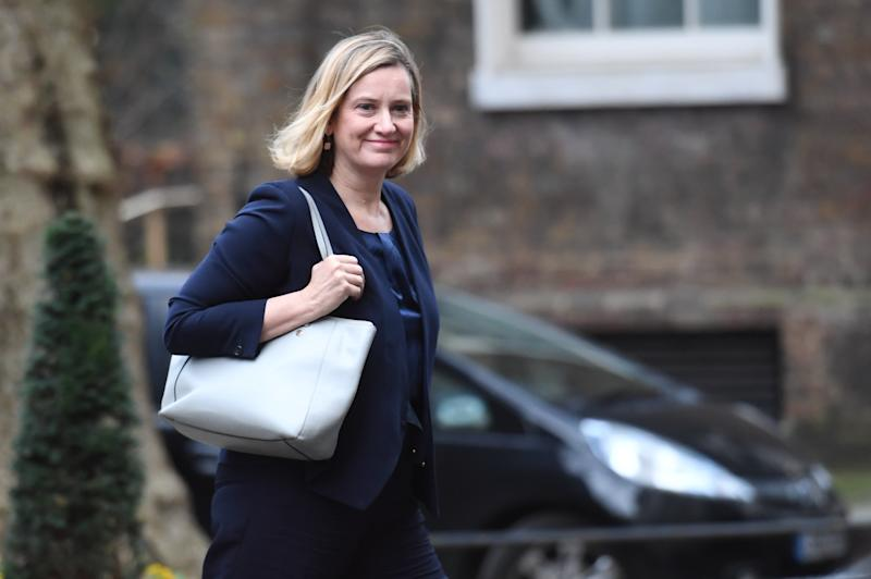<p>The Work and Pensions Secretary's comments came with the Prime Minister's political future in the balance ahead of the December 11 Commons vote.</p>