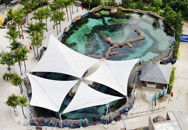 An overview of Marine Life Park's Adventure Cove Waterpark's Rainbow Reef. (Photo courtesy of Resorts World Sentosa)
