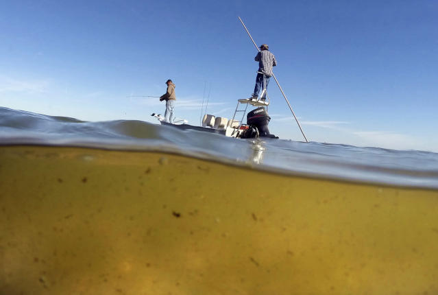 <p>Bob Chew, 64, of Edgewater, Fla., left, an avid fisherman and environmentalist, and Capt. Frank Brownell, 62, fish the murky waters of Mosquito Lagoon on the Indian River Lagoon, Fla., Feb. 17, 2016. The 153-mile-long Indian River Lagoon has suffered from harmful algae blooms caused by pollutants like fertilizers and human waste. (Photo: Red Huber/Orlando Sentinel via AP) </p>