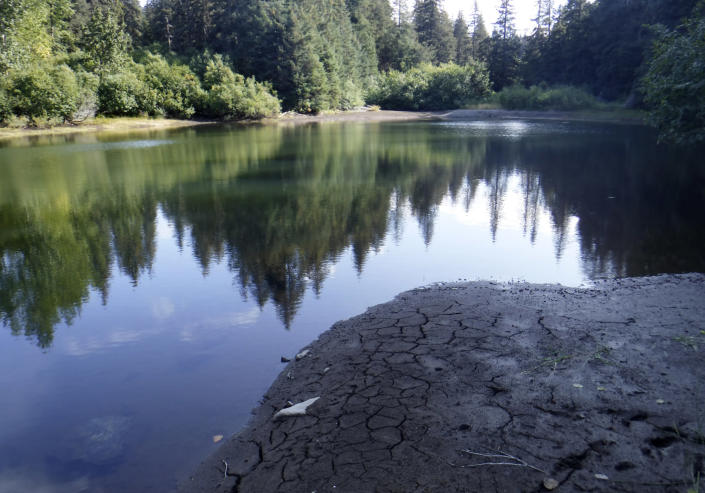 In this Sept. 4, 2019, photo provided by the City of Seldovia, Alaska, shows the condition of the community's dam as it struggles with a severe water shortage. Alaska's hot, dry summer has led to extreme measures for drought conditions for the Native communities of Seldovia and Nawwalek, prompting regional officials issue a disaster declaration. (Cassidi Cameron/City of Seldovia via AP)