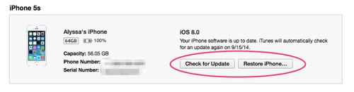 Screenshot showing Check for Update button