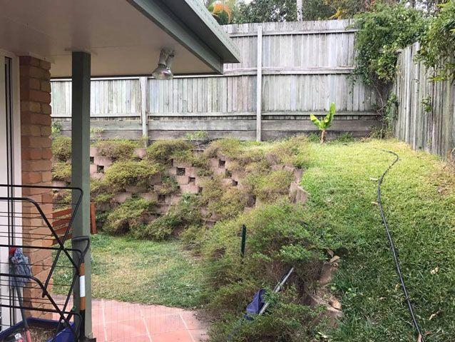 Can you spot the snake in this backyard? Source: Facebook