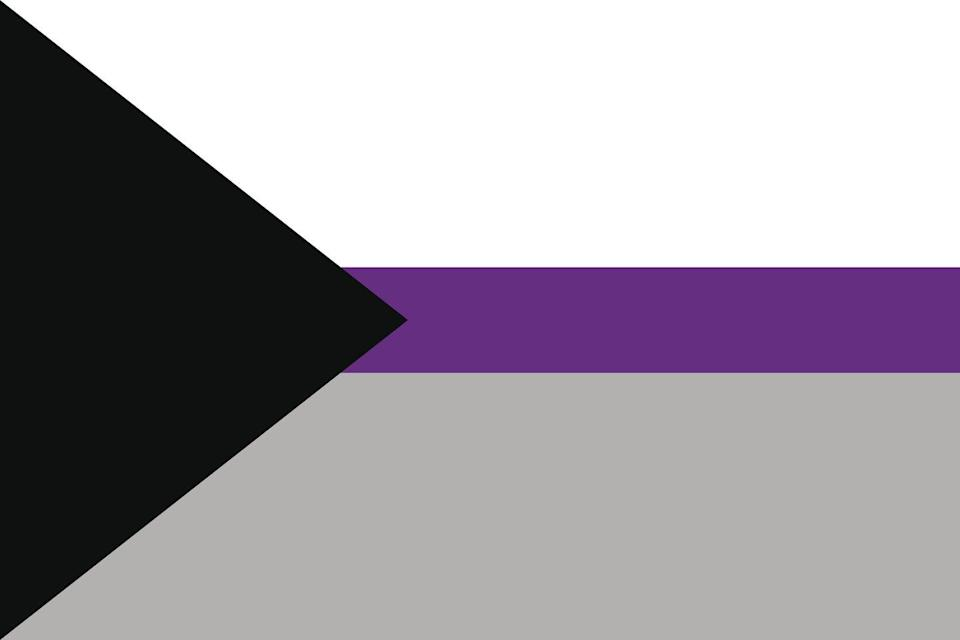 <p>The demisexual flag is meant to be a symbol for those who say they need to feel a strong emotional connection to someone before they are sexually attracted to them. According to ODU, the colors mean asexuality (black), demisexuality (gray), sexuality (white), and community (purple).</p>