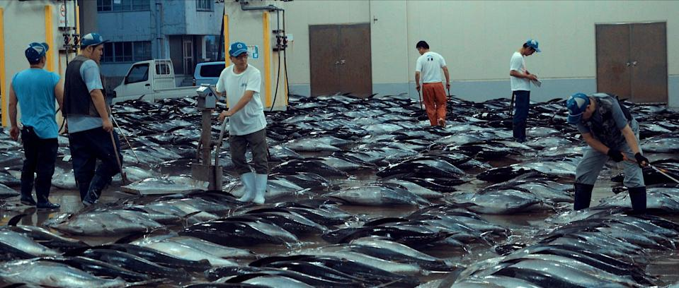 """<p>Be prepared to never enjoy shrimp the same way again after watching this investigative documentary that examines the global fishing industry, and the various human impacts on marine life.</p> <p>Watch <strong><a href=""""http://www.netflix.com/title/81014008"""" class=""""link rapid-noclick-resp"""" rel=""""nofollow noopener"""" target=""""_blank"""" data-ylk=""""slk:Seaspiracy"""">Seaspiracy</a></strong> on Netflix now. </p>"""
