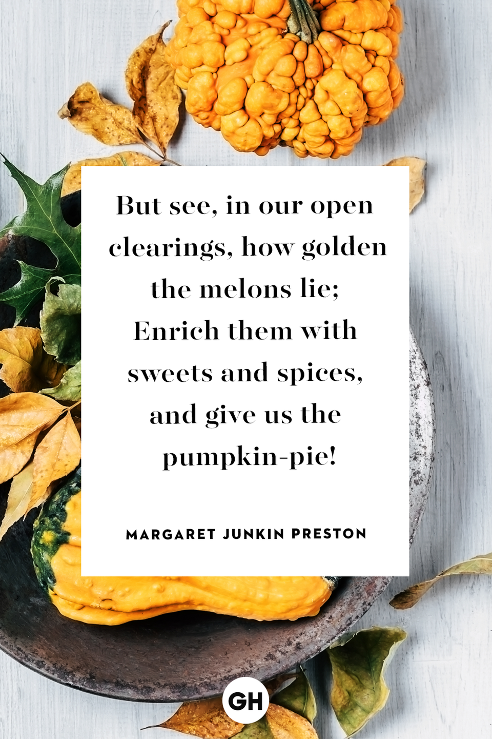 <p>But see, in our open clearings, how golden the melons lie; Enrich them with sweets and spices, and give us the pumpkin-pie!</p>