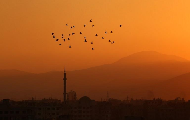 <p>Birds fly at sunset over the rebel-held town of Arbin in the eastern Ghouta region on the outskirts of the Syrian capital Damascus, on March 7, 2017. </p>