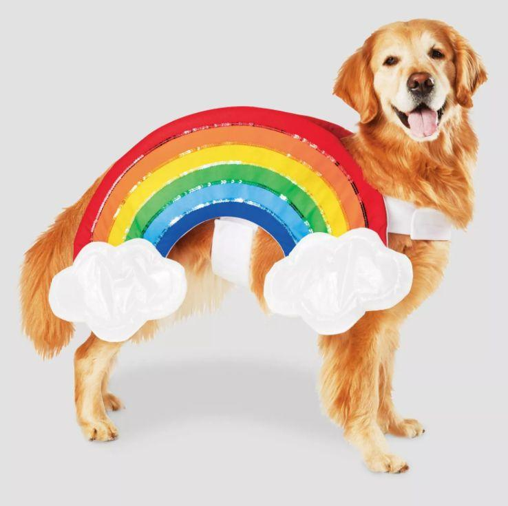 "Get this <a href=""https://goto.target.com/nakJa"" target=""_blank"" rel=""noopener noreferrer"">Rainbow with Clouds Halloween Pet Costume</a> for $13 at Target. It's available in sizes XS-XL and has a Velcro strap."