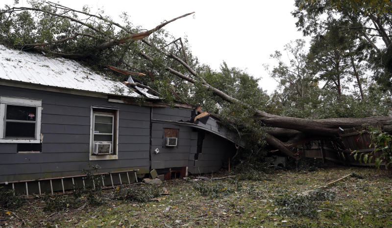 This fallen oak tree heavily damaged the home of Jennifer Lyles in Natchez, Miss., after a tornado hit early Thursday, Nov. 1, 2018. At least 11 tornadoes have been confirmed by National Weather Service surveyors so far in Louisiana and Mississippi as part of a storm system that moved across the region Wednesday night and Thursday. (AP Photo/Rogelio V. Solis)