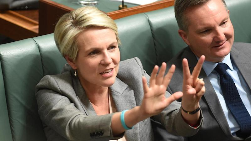 Tanya Plibersek says the Liberals should explain why they blocked a refugee settlement deal in 2011.