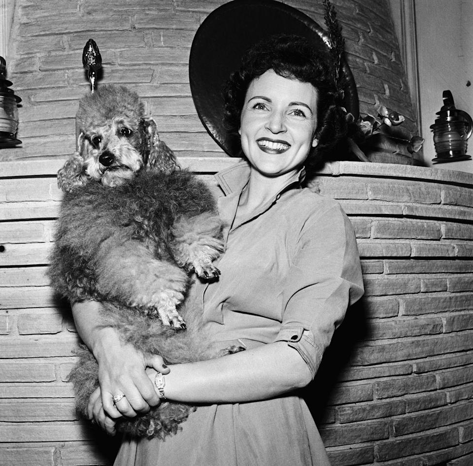 """<p>Betty welcomed cameras into her home in the mid-'50s to give fans a glimpse at her domestic life and her many dogs. By this time, Betty had been already been <a href=""""https://www.thelist.com/191021/the-truth-about-betty-whites-husbands/"""" rel=""""nofollow noopener"""" target=""""_blank"""" data-ylk=""""slk:married and divorced twice"""" class=""""link rapid-noclick-resp"""">married and divorced twice</a>. </p>"""