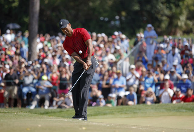 Tiger effects leads to highest PGA Tour ratings in 5 years
