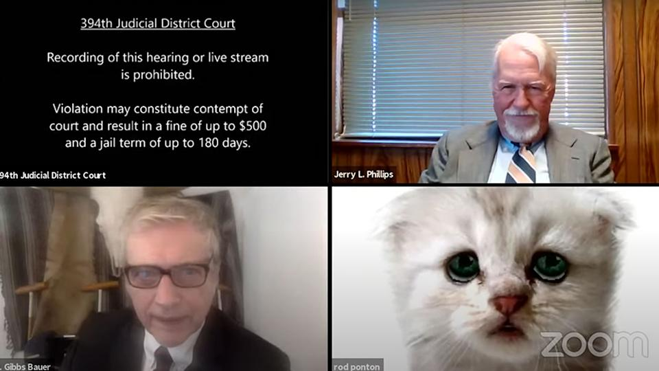 Rod Ponton accidentally appeared in a court hearing with a cat filter on. Source:YouTube/394th District Court of Texas - Live Stream