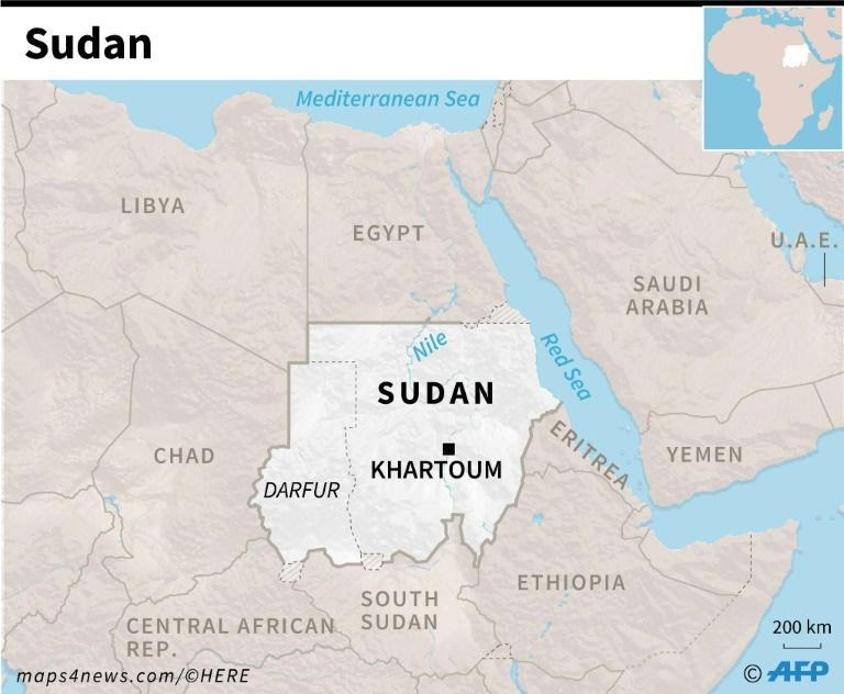 Sudanese rebels in Darfur have been battling the government since 2003
