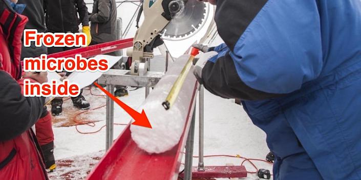 """The annotation """"Frozen microbes inside"""" points to the ice core, two people in coats are around it"""