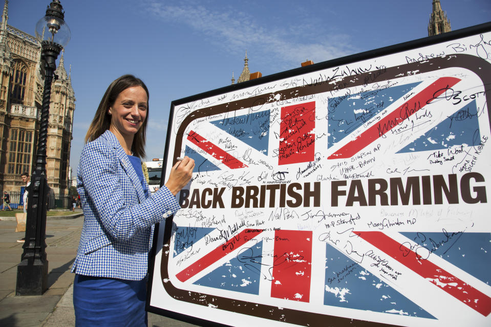Helen Whately MP at the National Farmers Union (NFU) took machinery, produce, farmers and staff to Westminster to encourage Members of Parliament to back British farming, post Brexit on 14th September 2016 in London, United Kingdom. MPs were encouraged to sign the NFUs pledge and wear a British wheat and wool pin badge to show their support. (photo by Mike Kemp/In Pictures via Getty Images Images)