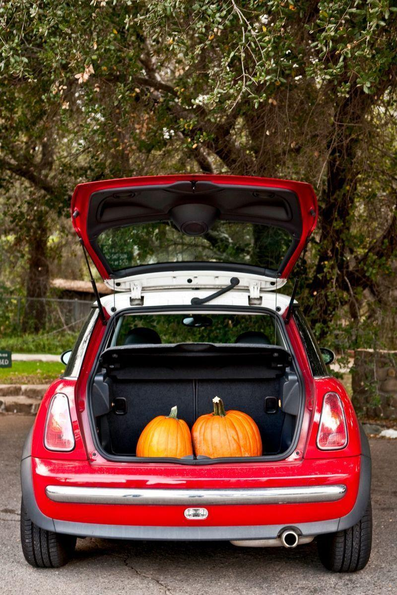 """<p>Answer: Due to safety concerns, <a href=""""https://www.womansday.com/life/g37002864/trunk-or-treat-ideas/"""" rel=""""nofollow noopener"""" target=""""_blank"""" data-ylk=""""slk:trunk-or-treating"""" class=""""link rapid-noclick-resp"""">trunk-or-treating</a> was introduced in 2000 as an alternative to hitting the pavement for candy on Halloween night. Cars are parked in a circle at a school or church parking lot, with event-goers decorating their open trunks and <a href=""""https://www.womansday.com/style/g23327100/disney-halloween-costumes/"""" rel=""""nofollow noopener"""" target=""""_blank"""" data-ylk=""""slk:dressing in costume"""" class=""""link rapid-noclick-resp"""">dressing in costume</a> in order to hand out sweets.<br></p>"""
