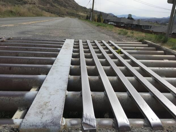 The B.C. government has laid six steel strips of 15-centimetre width on three cattle guards along the East Shuswap Road.