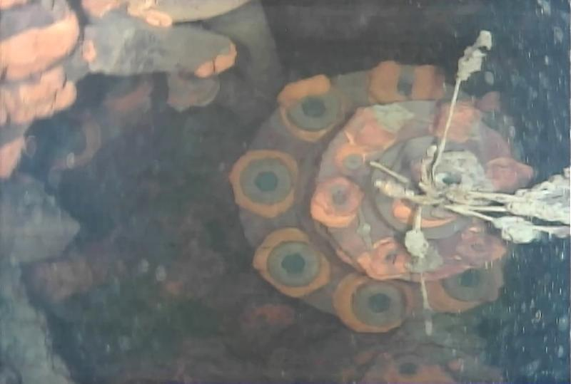 An image from an underwater robot shows the lower part of a control rod drive inside reactor No. 3 at Fukushima Dai-ichi nuclear power plant in Okuma Fukushima prefecture