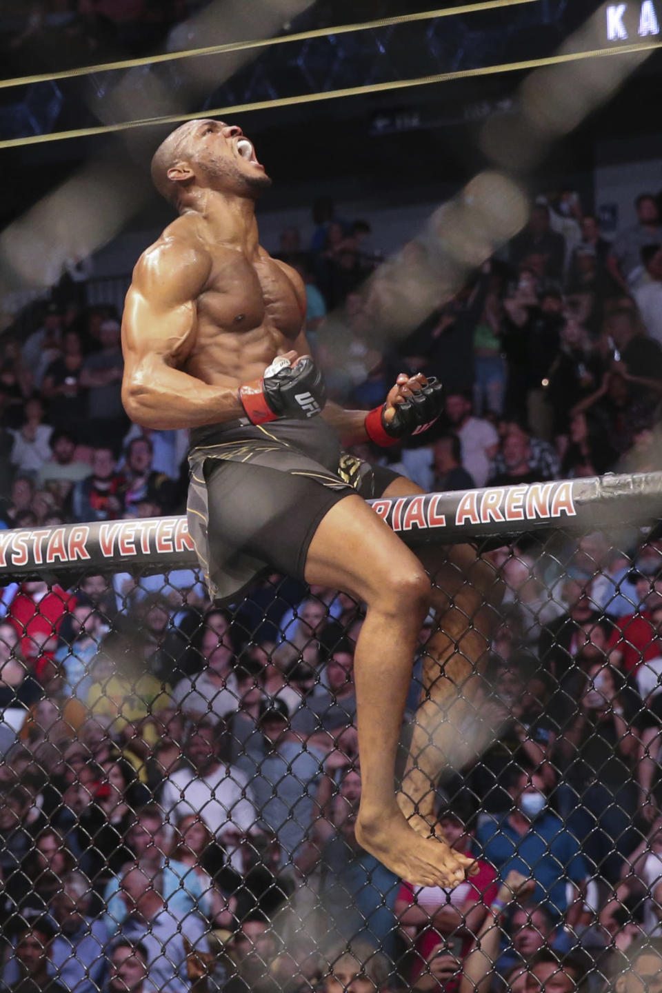 Kamaru Usman celebrates his win, atop the octagon fence, after a UFC 261 mixed martial arts bout against Jorge Masvidal early Sunday, April 25, 2021, in Jacksonville, Fla. (AP Photo/Gary McCullough)