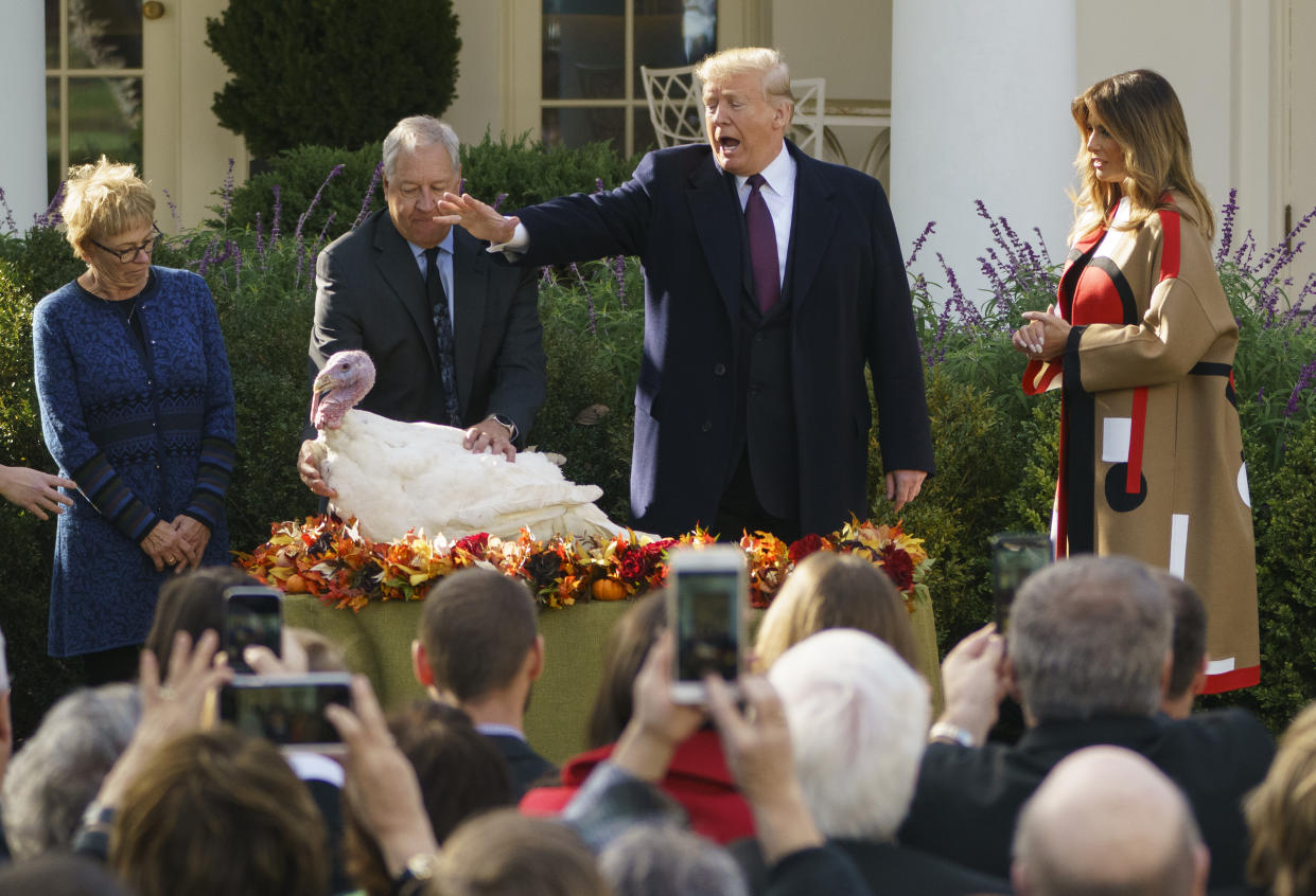 President Trump pardons Peas as he and first lady Melania Trump participate in a ceremony to pardon the National Thanksgiving Turkey in the Rose Garden of the White House in Washington on Tuesday. (Photo: Carolyn Kaster/AP)