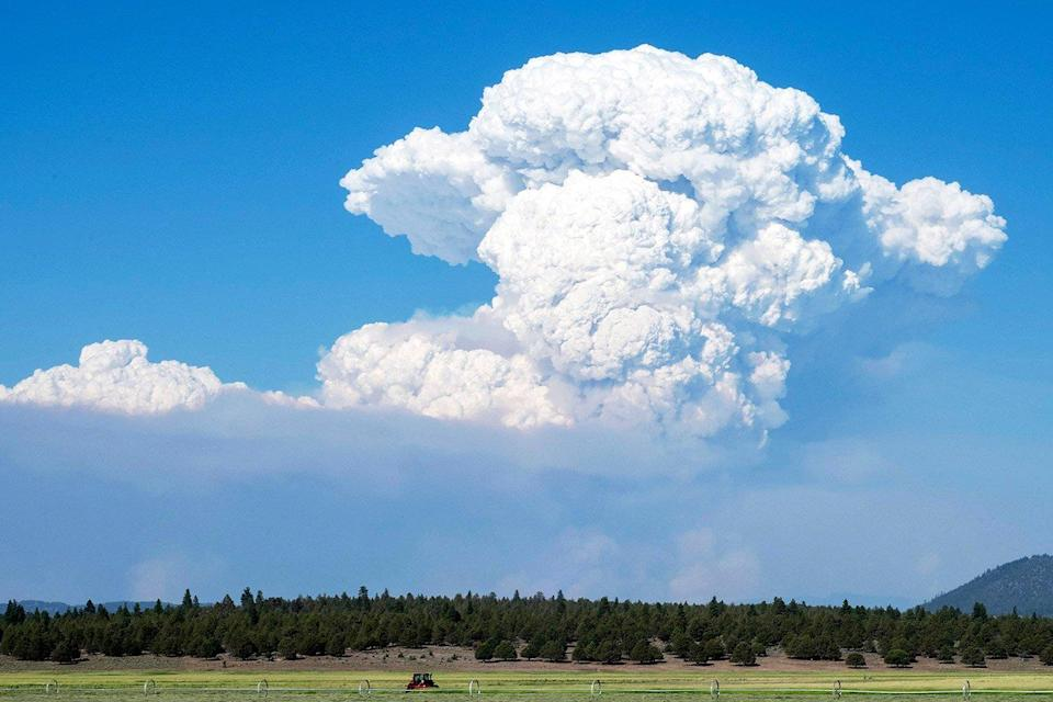 A pyrocumulus cloud from the Bootleg Fire drifts into the air near Bly, Oregon on July 16, 2021.