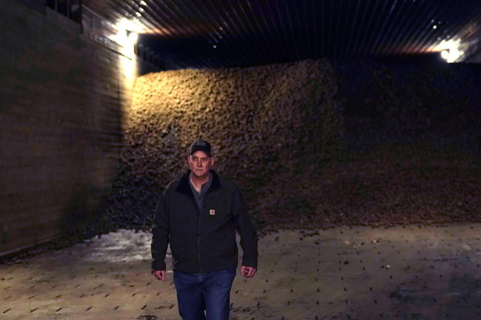 In a March 11, 2021 photo, potato farmer Brian Sackett walks inside a storage bin at his farm in Mecosta, Mich. For generations, Sackett's family has farmed potatoes that are made into chips. About 25% of the nation's potato chips get their start in Michigan, which historically has had reliably cool air during September harvest and late spring but now is getting warmer temperatures. (AP Photo/Carlos Osorio)