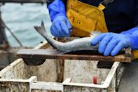 EU fishermen fear losing any access to the rich UK fishing waters will threaten their livelihoods