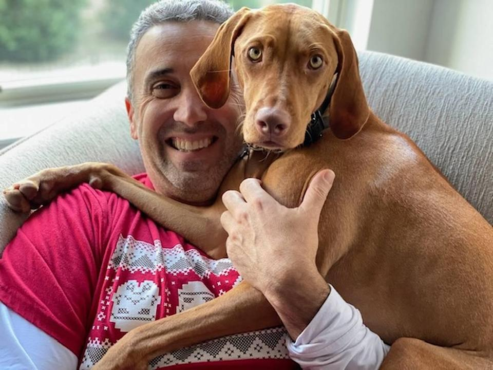 Jason Puca and his 1-year-old vizsla Zoe were both stung by yellow jackets on two seperate occasions. Jason got stung in July 2021, while Zoe got stung in November 2020.