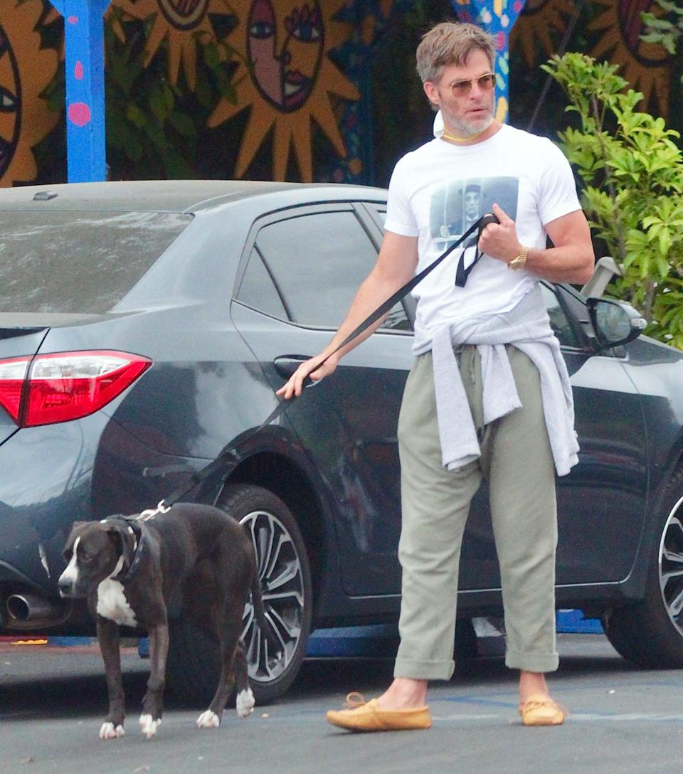 <p>Chris Pine takes his dog out for a walk in L.A. on Sunday, wearing green trousers and tan moccasins.</p>