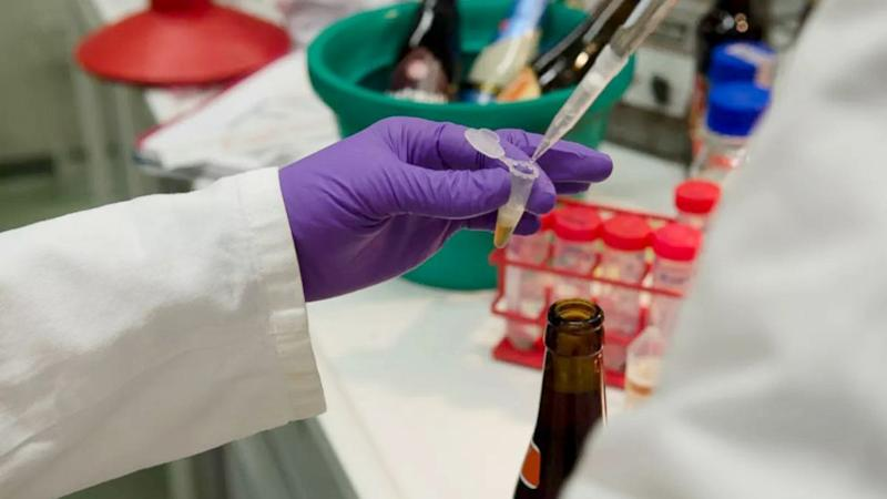 New App Aims to Pick Your Perfect Beer Through DNA Analysis