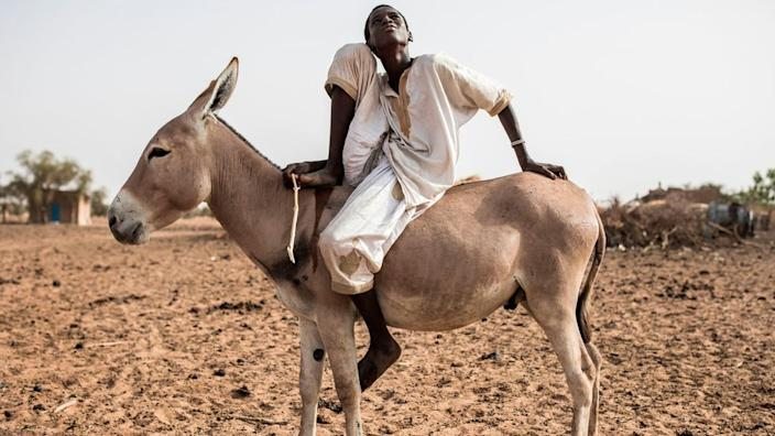 This young herder's life has also been put on hold since March because of coronavirus restrictions. On Friday he is is stuck in the Senegalese village of Mbetiou Peulh.
