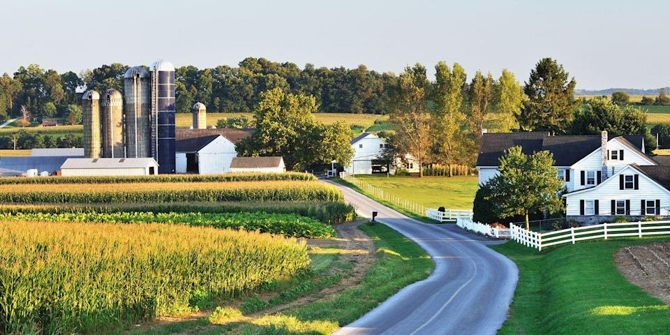 "<p><strong>Best for Visiting Amish Country </strong></p><p>Lancaster, 2 hours west of Philadelphia, not only has a burgeoning arts scene, but it's the gateway to Amish country. Drive along route 340, passing rolling hills, to communities like Bird-in-Hand, where you'll see Amish farms, quilt shops, roadside fruit stands manned by bonneted teens, and yes, plenty of horse-and-buggies. </p><p><strong><em>Where to Stay:</em></strong> <a href=""https://www.tripadvisor.com/Hotel_Review-g52970-d1718993-Reviews-Cork_Factory_Hotel-Lancaster_Lancaster_County_Pennsylvania.html"" rel=""nofollow noopener"" target=""_blank"" data-ylk=""slk:Cork Factory Hotel"" class=""link rapid-noclick-resp"">Cork Factory Hotel</a>, <a href=""https://www.tripadvisor.com/Hotel_Review-g52970-d610589-Reviews-Lancaster_Arts_Hotel-Lancaster_Lancaster_County_Pennsylvania.html"" rel=""nofollow noopener"" target=""_blank"" data-ylk=""slk:Lancaster Arts Hotel"" class=""link rapid-noclick-resp"">Lancaster Arts Hotel</a></p>"