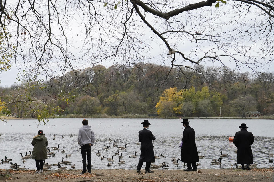 Orthodox Jewish men and other park-goers watch and toss food to geese and other waterfowl as they watch from the south side of the lake in Prospect Park, Sunday, Nov. 15, 2020, in the Brooklyn borough of New York, (AP Photo/Kathy Willens)