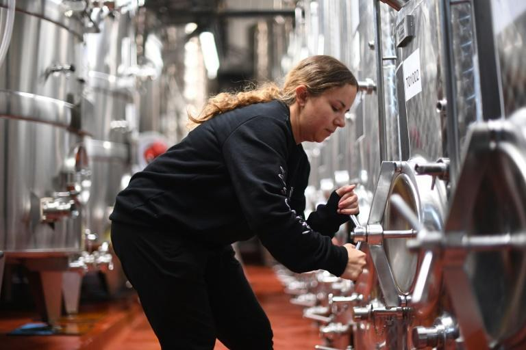 The British wine industry did not take a stand at the time of the Brexit vote but is now struggling with the consequences.
