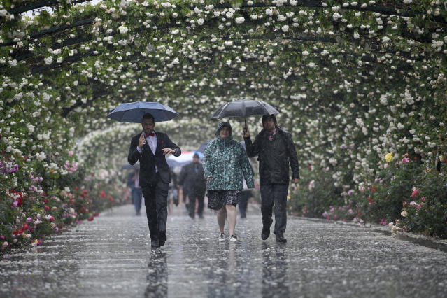 Racegoers arrive during pouring rain before the running of the Melbourne Cup at the Flemington Racecourse in Melbourne, Australia, Tuesday, Nov. 6, 2018. (AP Photo/Andy Brownbill)