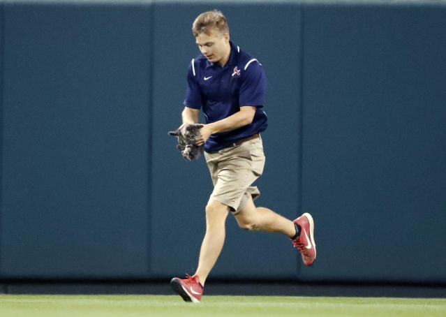 A Cardinals grounds crew member was bitten by a cat in 2017. He was hit in the head with a first pitch in 2018. (AP Photo/Jeff Roberson)