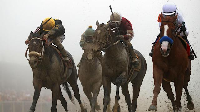 Betting on the 2019 Preakness Stakes? We've got you covered with odds, picks and a tutorial on betting horse races.
