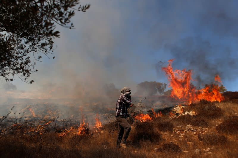 Grass burns in an olive field after Israeli forces fired tear gas canisters during a Palestinian protest against Jewish settlements, near Ramallah in the Israeli-occupied West Bank