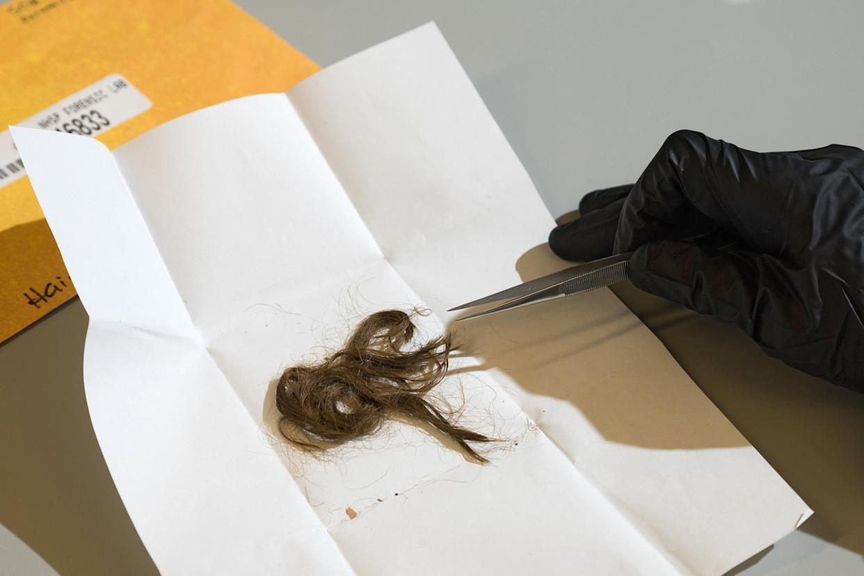 A lab technician examines a hair sample collected from a woman found in a barrel in a state park in New Hampshire, at the University of California, Santa Cruz, June 17, 2019. (James Tensuan/The New York Times)