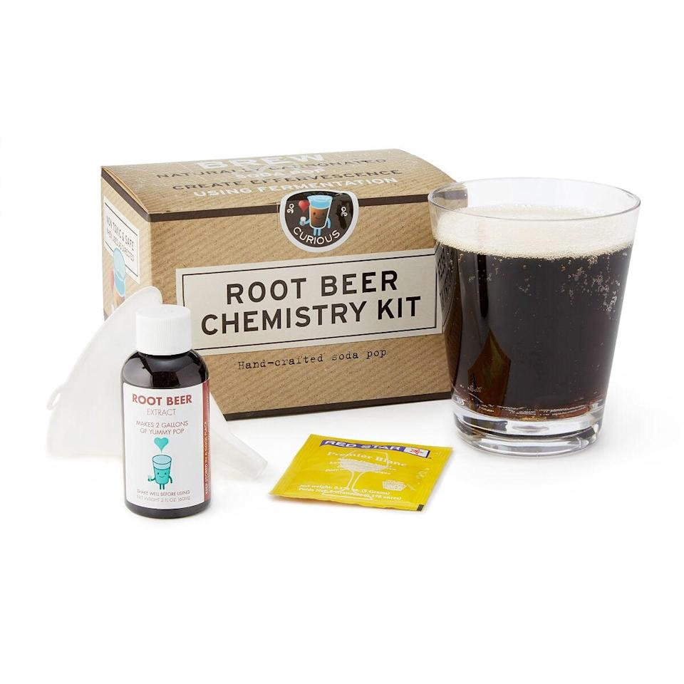 <p>Soda lovers will be obsessed with this <span>Root Beer Science Kit</span> ($16).</p>