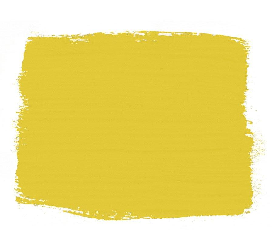 "<p><strong>Yellow</strong></p> <p>Just because you don't have a traditional office space doesn't mean you won't hold meetings. Whether your trusty intern clocks in every day or you invite your investors over for lunch, your home office is open to everyone and anyone. Give your space a warm and welcoming attitude with a cheery yellow.</p> <p>""Yellow sparks feelings of joy, will inspire optimism, and helps our brains to think positively and creatively,"" says <a href=""https://www.anniesloan.com/"">Annie Sloan,</a> color expert and creator of Chalk Paint. ""<a href=""https://www.anniesloan.com/english-yellow-chalk-paint"">English Yellow</a> [pictured] is my brightest, zingiest yellow, and ideal if your meetings tend to run on!""</p>"